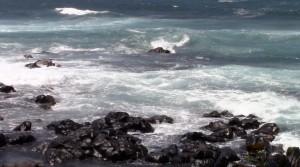 Maui _Ronald_Richoux_Coach_Windsurf_SUP_NewsbyCharles_42
